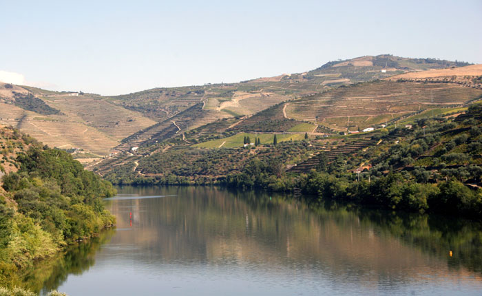 Image - The Douro river flanked by vineyards