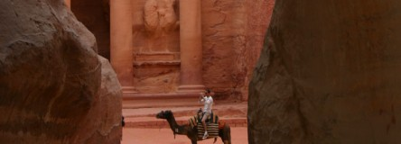 image - Petra, Jordan. Camel in front of the Treasury