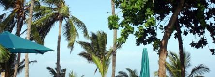 Image - Kenya beach: The Serena Beach hotel pool is perfect for a little sunbathing