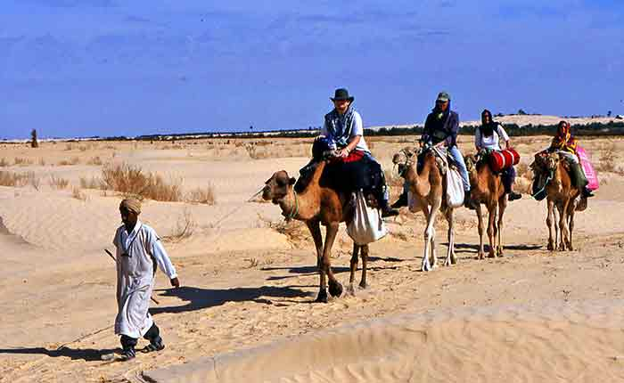 Image: Camel trek in the Sahara, Tunisia