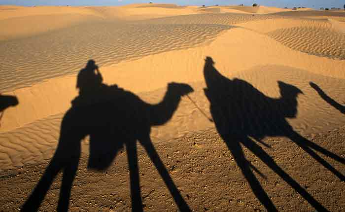 Image: Camel safari in the Sahara
